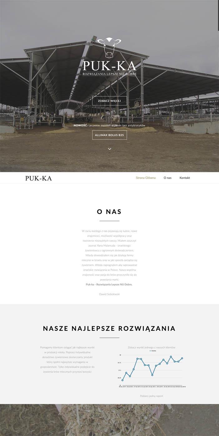 www.puk-ka.pl